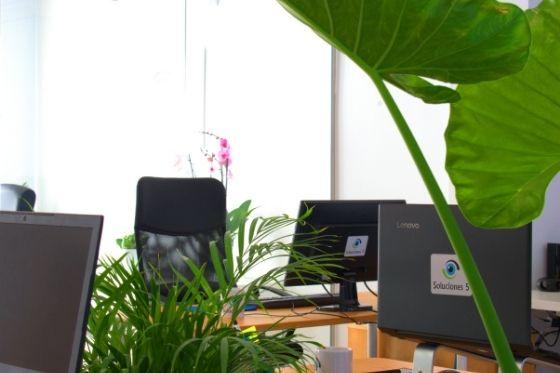 Oficinas de Soluciones5